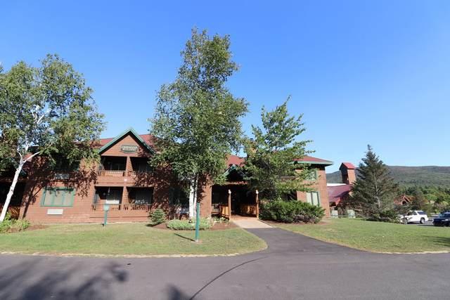 10 Lakeside West Drive 56D, Woodstock, NH 03262 (MLS #4828433) :: Lajoie Home Team at Keller Williams Gateway Realty