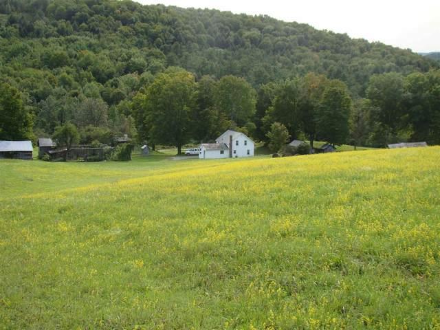 106 Maslack Drive, Poultney, VT 05764 (MLS #4829715) :: Hergenrother Realty Group Vermont