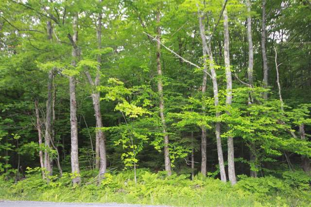 Lot 5 Handle Road, Dover, VT 05356 (MLS #4830237) :: Hergenrother Realty Group Vermont