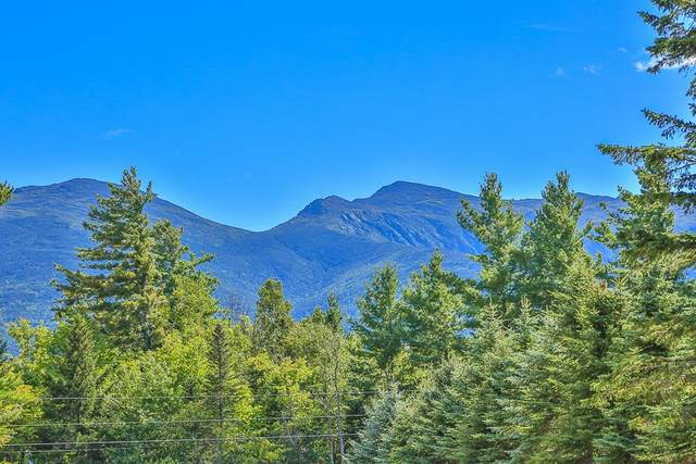 330 Randolph Hill Road, Randolph, NH 03593 (MLS #4831418) :: Jim Knowlton Home Team