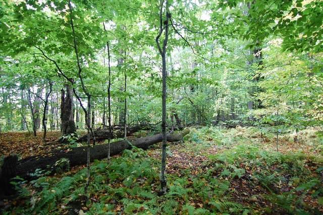 3 Beechwood Ridge Road #3, Winhall, VT 05340 (MLS #4831577) :: Signature Properties of Vermont