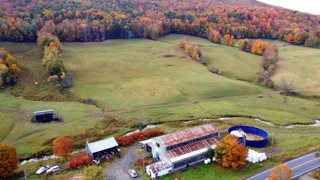 0 East Roxbury Road, Northfield, VT 05663 (MLS #4831873) :: Signature Properties of Vermont