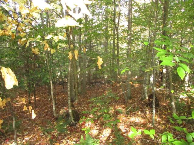 000 Brookview Lane, Wolcott, VT 05680 (MLS #4832061) :: Signature Properties of Vermont
