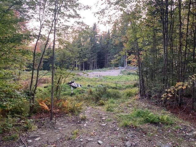 Old School House Road #3, Eden, VT 05653 (MLS #4832565) :: Signature Properties of Vermont