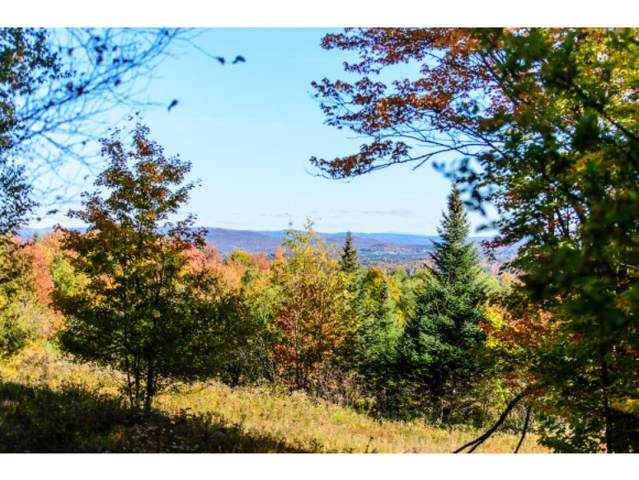 1531 Diggins Road, Hyde Park, VT 05655 (MLS #4834533) :: Hergenrother Realty Group Vermont
