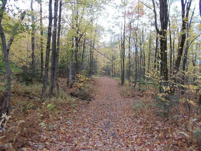 214 Benson Road, Richford, VT 05476 (MLS #4834607) :: Hergenrother Realty Group Vermont