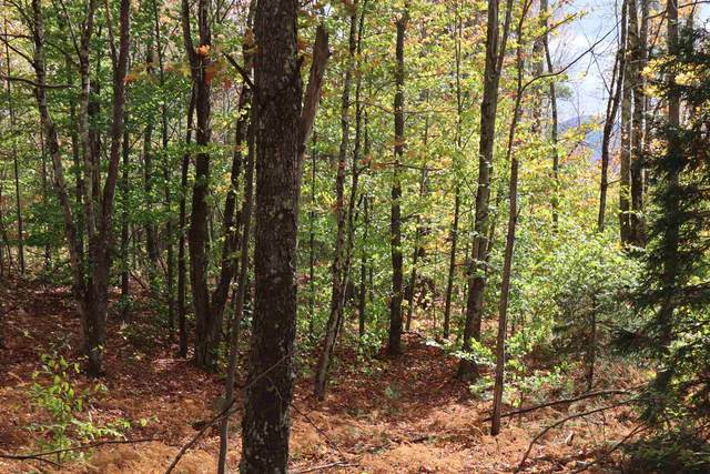 Lot 4 Shepherd's Way #4, Underhill, VT 05489 (MLS #4834768) :: Hergenrother Realty Group Vermont