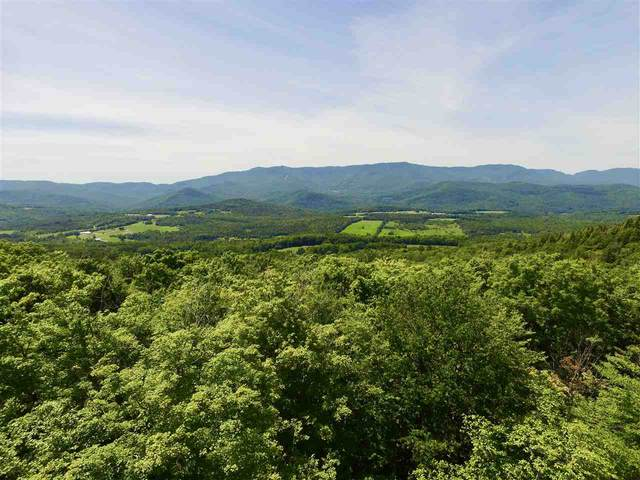 360 Cider Mountain Road #1, Warren, VT 05674 (MLS #4834898) :: Hergenrother Realty Group Vermont