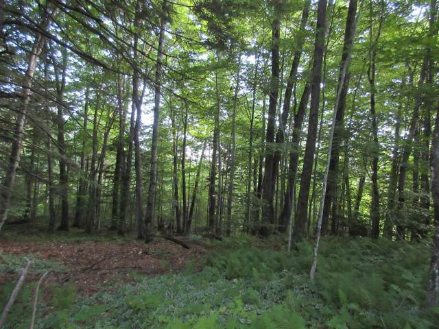 00 Highland View, Weston, VT 05161 (MLS #4835611) :: Signature Properties of Vermont