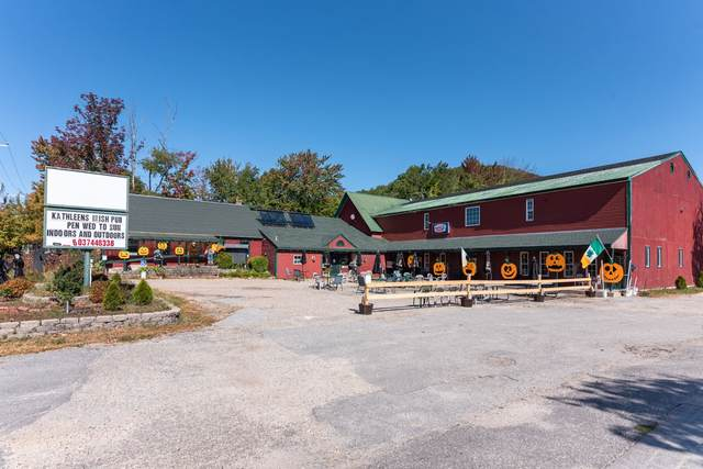 90 Lake Street, Bristol, NH 03222 (MLS #4835613) :: Signature Properties of Vermont