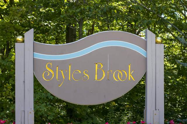 28 Styles Branch Road #301, Stratton, VT 05155 (MLS #4836346) :: Lajoie Home Team at Keller Williams Gateway Realty