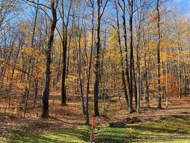 Lot 96 and 97 Wade Pasture Road, Stowe, VT 05672 (MLS #4836494) :: Jim Knowlton Home Team