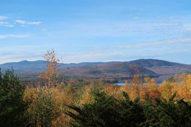 00 Scenic View Drive Lot 5, Bristol, NH 03222 (MLS #4836526) :: Signature Properties of Vermont