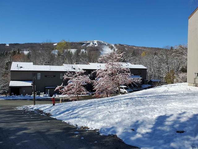 17D Snow Tree Lane D, Dover, VT 05356 (MLS #4836835) :: The Hammond Team