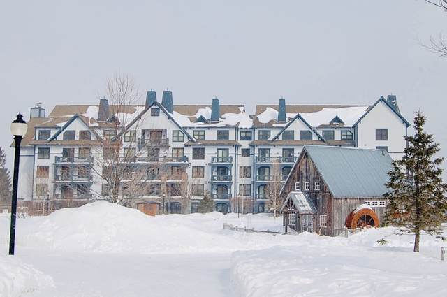 43 Middle Ridge Road #313, Stratton, VT 05155 (MLS #4837724) :: Signature Properties of Vermont
