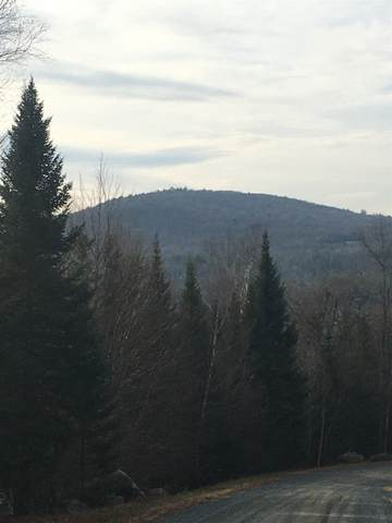 13 Franconia Mountains Road #13, Franconia, NH 03580 (MLS #4837956) :: Signature Properties of Vermont
