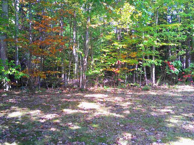 Lot 61A Colony Drive, Barnstead, NH 03225 (MLS #4838734) :: Signature Properties of Vermont