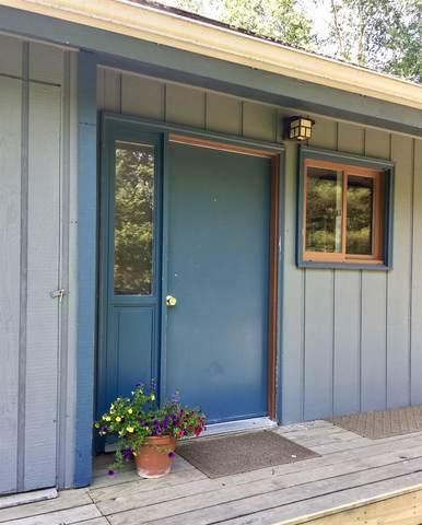 8 Gale Meadow Lane, Stowe, VT 05672 (MLS #4838793) :: The Gardner Group