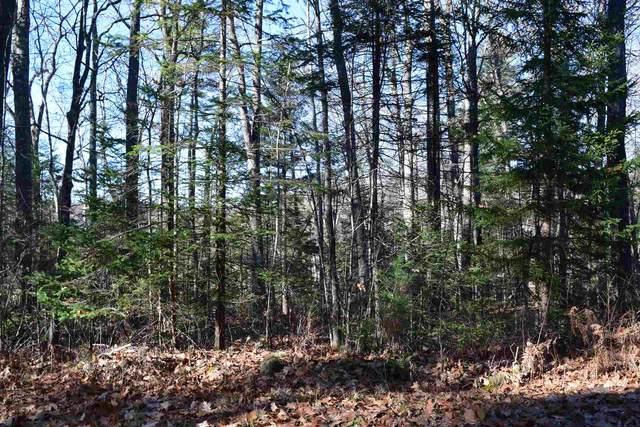 L 189 Hanover Drive #189, Haverhill, NH 03765 (MLS #4840158) :: Signature Properties of Vermont
