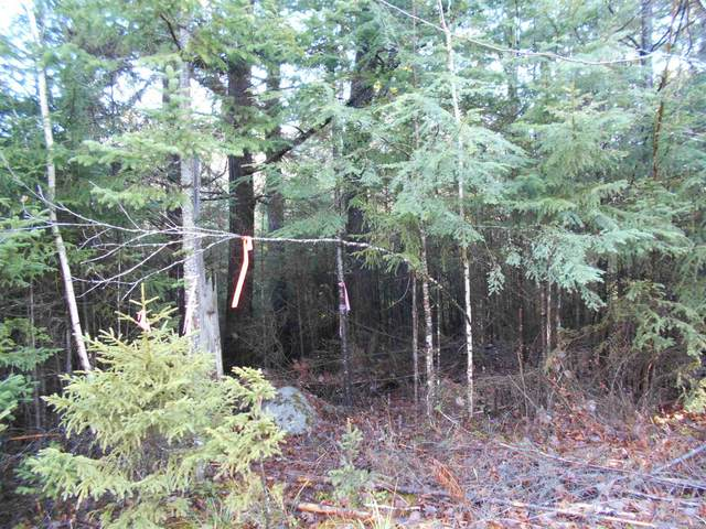 23.1 Mirror Lake Estates Drive, Whitefield, NH 03598 (MLS #4840457) :: Signature Properties of Vermont