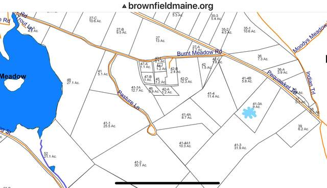Lot 41-3A Pequawket Trail, Brownfield, ME 04010 (MLS #4840655) :: Keller Williams Coastal Realty