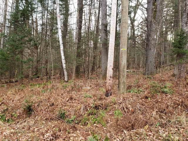 Lot 156 Deerfield Drive, Haverhill, NH 03785 (MLS #4841723) :: Signature Properties of Vermont