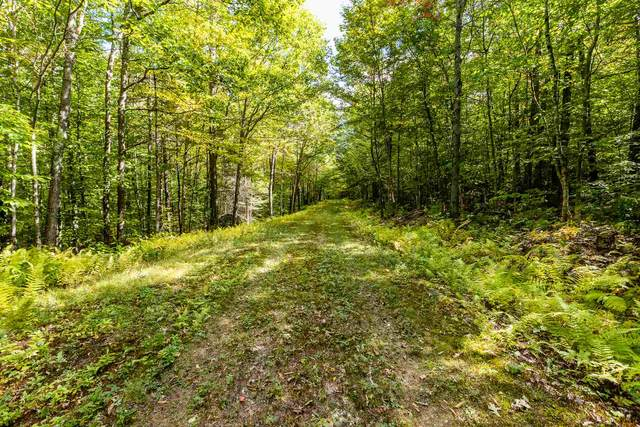 Lot 6 North Wilmot Road, Wilmot, NH 03287 (MLS #4841907) :: Keller Williams Realty Metropolitan