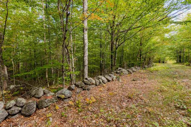 Lot 7 North Wilmot Road, Wilmot, NH 03287 (MLS #4841910) :: Keller Williams Realty Metropolitan