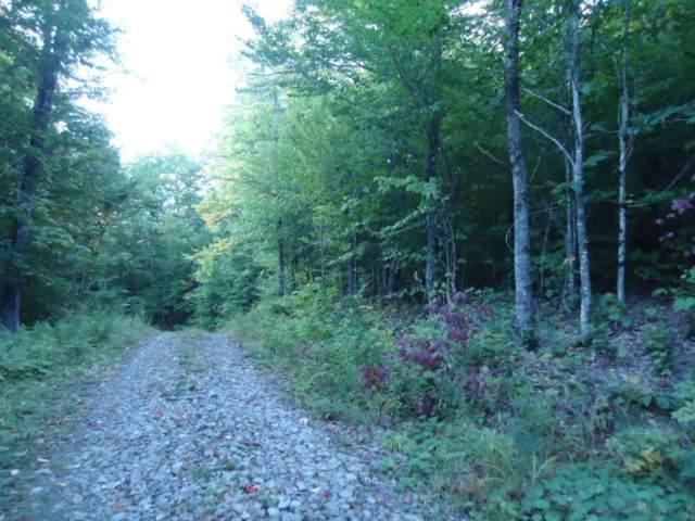 0 Hampshire Woods Loop #27, Errol, NH 03579 (MLS #4842257) :: Signature Properties of Vermont