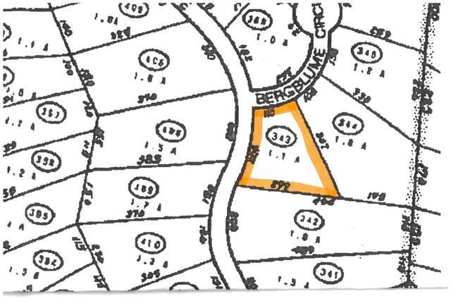 0 Bergrucken Lane #343, Stamford, VT 05352 (MLS #4842791) :: Signature Properties of Vermont