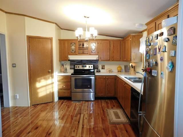 2 Sycamore Avenue, North Hampton, NH 03862 (MLS #4842928) :: Keller Williams Coastal Realty
