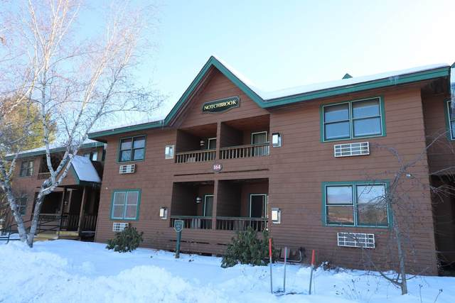 164 Deer Park Drive 161 B, Woodstock, NH 03262 (MLS #4843497) :: Signature Properties of Vermont