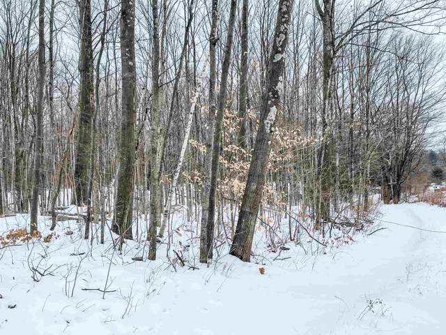 0 Case Street, Middlebury, VT 05753 (MLS #4844269) :: Hergenrother Realty Group Vermont