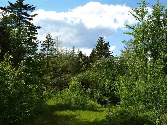 000 Woodland Drive, Jay, VT 05859 (MLS #4844984) :: Signature Properties of Vermont