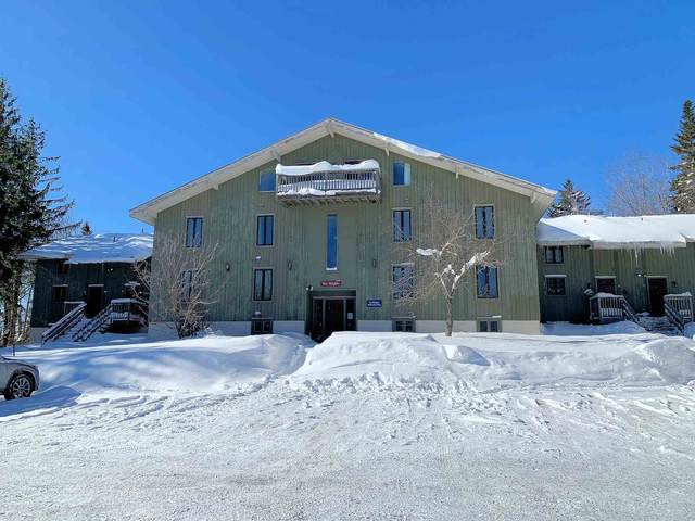 53 Birches Way Bb2, Peru, VT 05152 (MLS #4845332) :: Signature Properties of Vermont