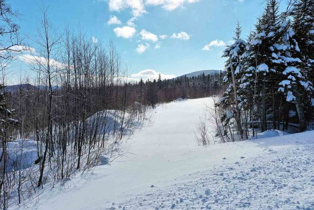 Valley View Extension #8, Andover, VT 05143 (MLS #4846027) :: Signature Properties of Vermont