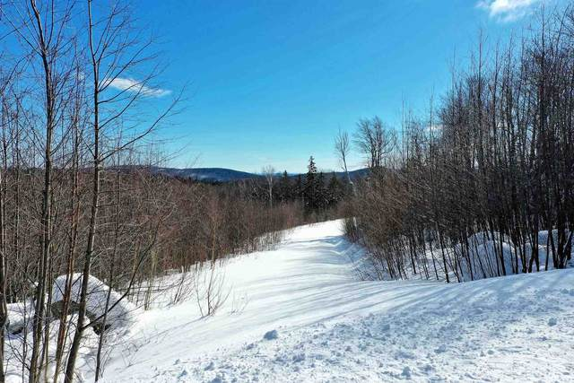Valley View Extension #10, Andover, VT 05143 (MLS #4846036) :: Signature Properties of Vermont