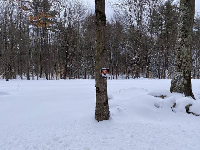 469-5 South Road Lot 5, Sullivan, NH 03445 (MLS #4846638) :: Signature Properties of Vermont