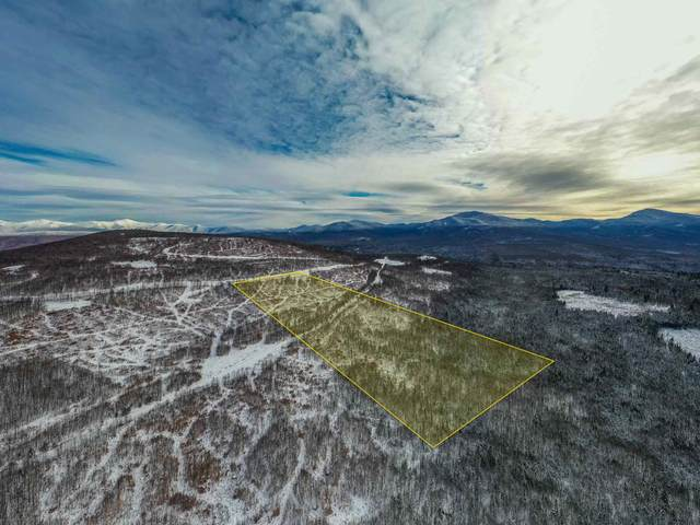 014 Ledgewood Drive #14, Bethlehem, NH 03574 (MLS #4846754) :: Signature Properties of Vermont