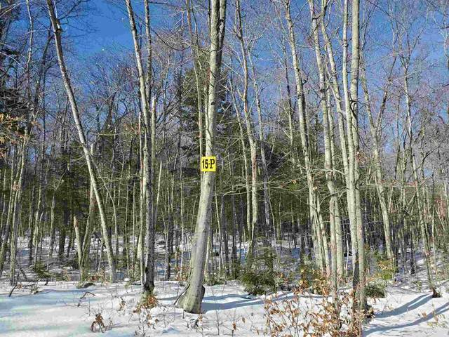 Lot 15 P Buzzell Ridge Road #15, Sandwich, NH 03227 (MLS #4846938) :: Signature Properties of Vermont