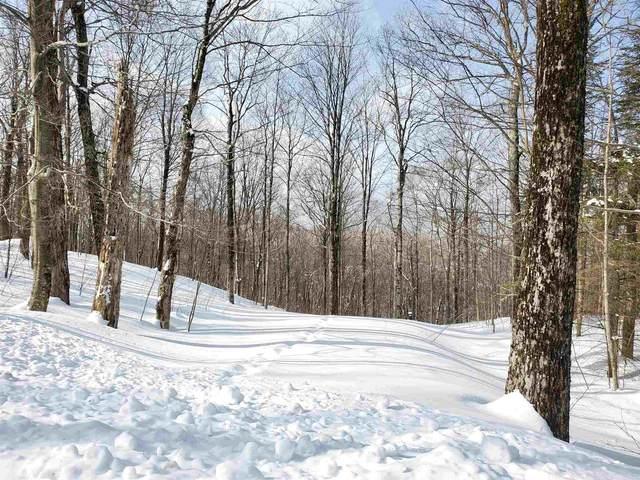 142 Mountainside Lane, Killington, VT 05751 (MLS #4847240) :: Signature Properties of Vermont