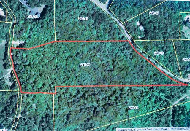 Map 247 Lot 19 E Madison Road, Madison, NH 03849 (MLS #4848094) :: Cameron Prestige