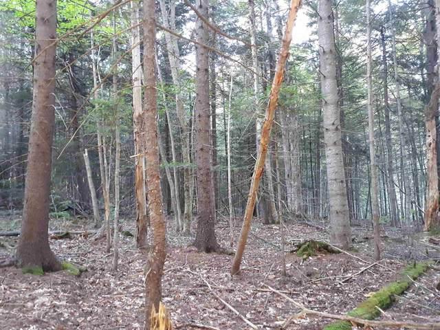 0 Bergabhang Drive #272, Stamford, VT 05352 (MLS #4848853) :: Signature Properties of Vermont