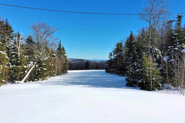 00 Hemlock Hill Drive, Ludlow, VT 05149 (MLS #4849293) :: Signature Properties of Vermont