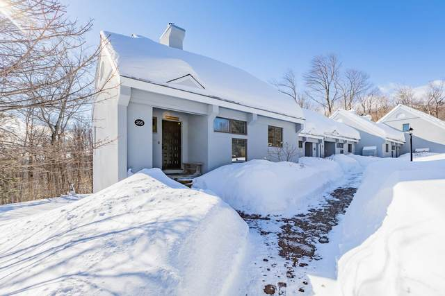 14 Styles Branch Road #205, Stratton, VT 05155 (MLS #4849557) :: Parrott Realty Group