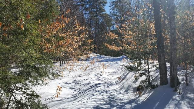4 Acadia Way #4, Conway, NH 03818 (MLS #4851827) :: Signature Properties of Vermont