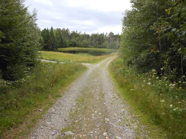Lot F Carpentier Farm Road, Morristown, VT 05661 (MLS #4852554) :: The Gardner Group