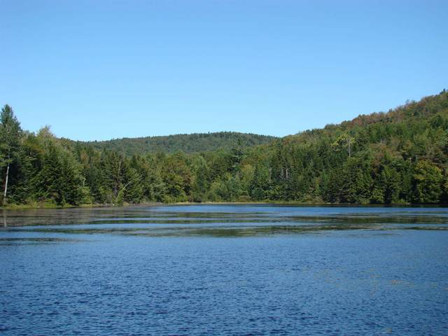 0 Parsons Road A, Whitingham, VT 05361 (MLS #4856262) :: Signature Properties of Vermont