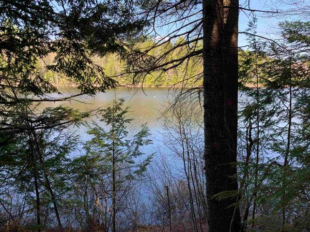 53 Anderson Pond Road, Grantham, NH 03753 (MLS #4856338) :: Signature Properties of Vermont