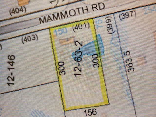 401 Mammoth Road, Londonderry, NH 03053 (MLS #4858145) :: Keller Williams Realty Metropolitan
